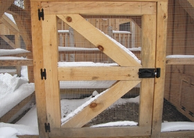 5x10-chicken-coop-for-sale-ma